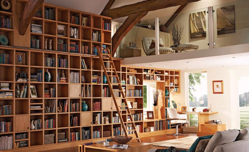Having a library in my home is something that I have always dreamed of and will obtain one day. Here are a few examples…