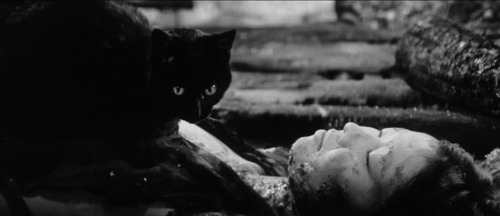 (via The Obscure Hollow: Kuroneko (Black Cat) (1968))