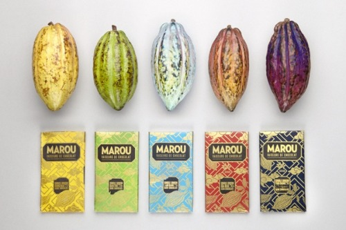 Vietnam chocolate marou