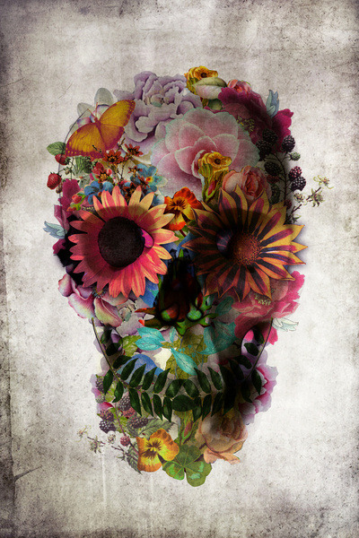 flower skull by Ali Gulec