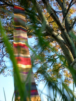 Look what I unearthed! An artsy shot of my Doctor Who scarf with a cool perspective, a tree, and some grass. Now that's cool. XD Kidding. Anyway, this is my baby Who scarf that is now out in the great wide world. This was my original one that I had to end up selling because I was so behind on knitting orders and schoolwork that I had to let it go in order to get everything done. And to maintain my sanity. If you're interested, please check out my Etsy shop, TheMoonside, for a scarf like this!