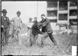 Alderman John E. Scully wrestling with a bear at the Madison Street Carnival c. 1904. Photo from the Chicago Daily News. Want a copy of this photo?  > Visit our Rights and Reproductions Department and give them this number: DN-0001220 Connect with the Museum