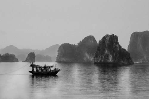 lensblr-network:  Vinh Bai Tu LongFishing boat in Bai Tu Long Bay. by willbrantingham.com