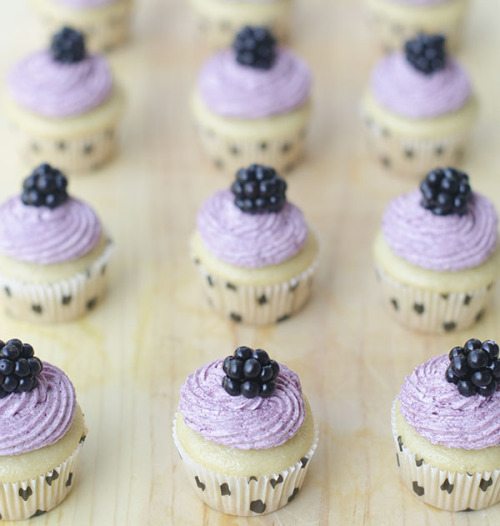 gastrogirl:  mini vegan vanilla cupcakes with blackberry frosting.