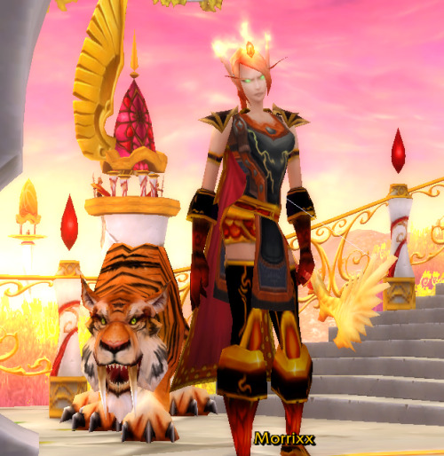 "queen-elizabeth-thefirst:  Updated my xmog look for Flame Keeper Morrixx :) Ran Molten Core twice for Crown of Destruction which drops off Ragnaros. It's a mail helm that looks like the cloth helm Circle of Flame which drops in BRD off Ambassador Flamelash. From that same boss, I got the polearm Flame Wrath. :3 Shoulders are xmog'd to Netherstorm Shoulderguards. Chest, gloves, legs, boots all xmog'd to the blood knight mail/bloodforge mail pieces (they're identical sets, and quite expensive…) The kitty's name is Incendio (pronounced in CHEN dee oh) which is Italian for ""blaze"" and you may know him as Shango from Sholazar Basin."