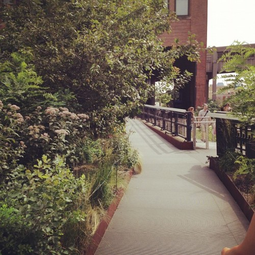 Nice day for a walk on the high line (Taken with Instagram)