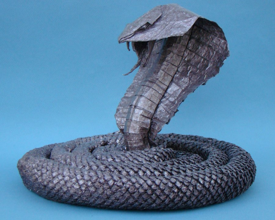 King Cobra by ~manilafolder
