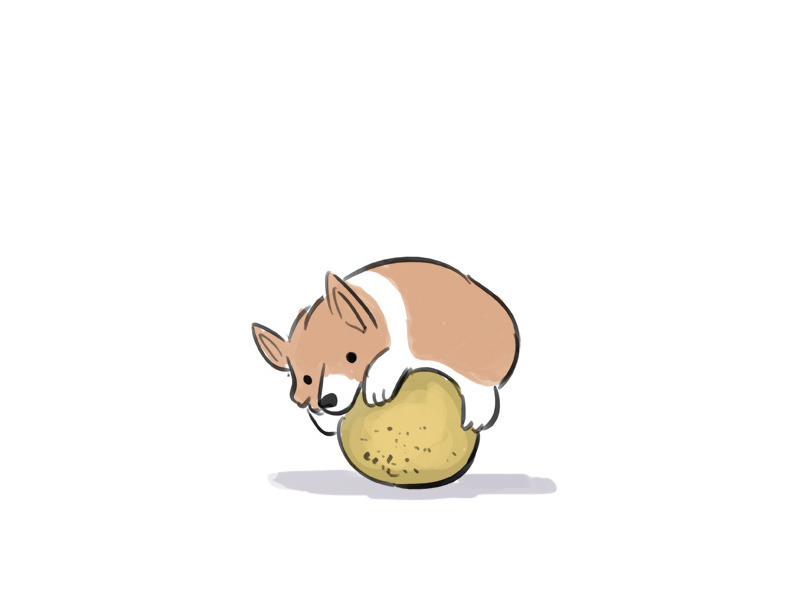 moosesmeeses:  Corgi hugging a cantaloupe by thewondercat on reddit  With Source: http://www.reddit.com/r/IAmA/comments/xtu5a/iama_nickelodeon_storyboard_artist_im_back_ama/