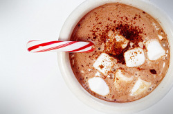 chocolate hot chocolate candy cane yum hot cocoa peppermint drink porn