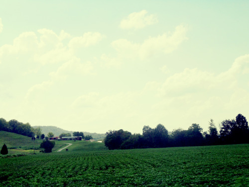 """Country Life"" It's so serene.  Taken while riding in the car."