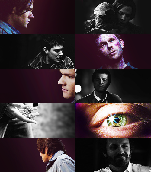 dnwinchester:  color meme: swan song + purple/black  Oh man. Gorgeous.