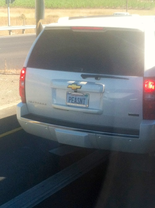 westernkanye:  all of you in license plate form