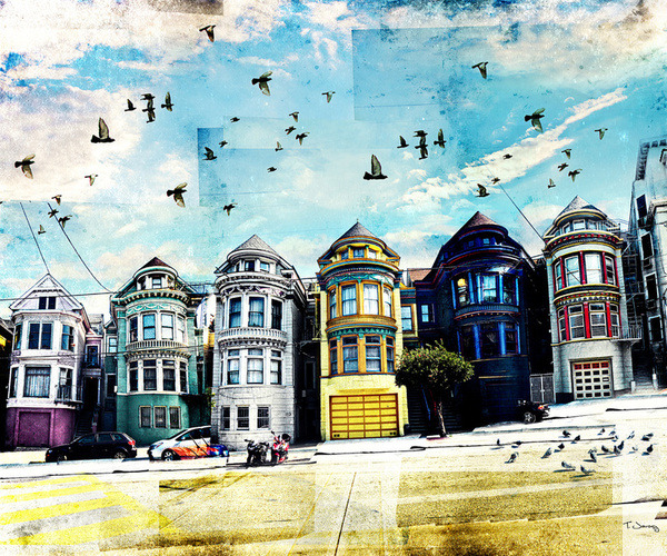 """Painted Ladies"" by Tim Jarosz"