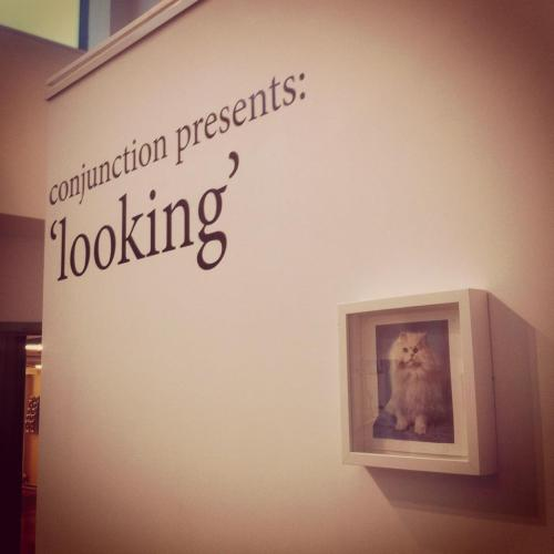 A view of my work at… 'Looking' Private View | 6 - 8 pm | Conjunction | The Old Fire Station | Oxford