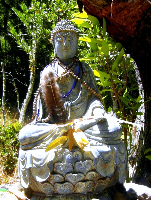 Buddha in the forest at Spirit Rock At certain times, a silent mind is very important, but 'silent' does not mean closed. The silent mind is an alert, awakened mind; a mind seeking the nature of reality. —Lama Yeshe
