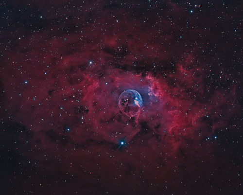 (via APOD: 2012 August 4 - The Bubble Nebula) Image Credit & Copyright: Yves Van den Broek Seen through the constellation Cassiopeia, the Queen, NGC 7635, the Bubble Nebula, is formed from a hot O star that has carved a 10 light-year clear space in the molecular cloud surrounding it. The inner part of the bubble is glowing gasses from the star's formation. This shot is both in narrow-band imaging, in order to pick up the details of the nebula, and in broad-band to get a good star-field behind it.
