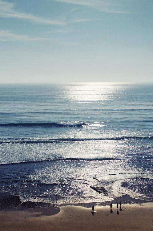 surf kopi.jpeg