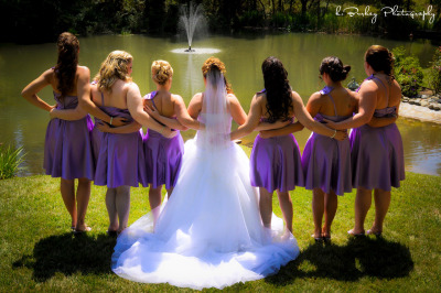 New Weddings 2012