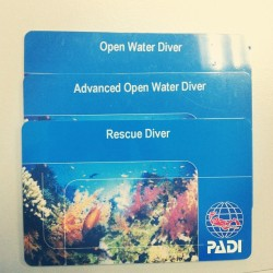 Got my newest card! :D #padi #diving #rescue #card #certification (Taken with Instagram)