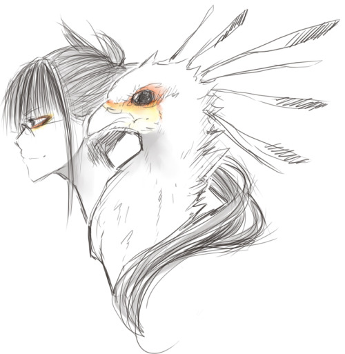 sadprince:  loisfullofscrap:  chyo:  secretary bird — bok bok   Screech Owl - Fucking Hoot   Ostrich - what the fuck do ostriches even sound like   Penguin -sits on everyone