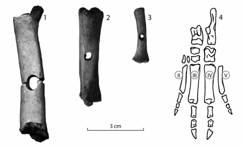 New Open Access Article- BONE ARTEFACTS FROM THE KEAVA HILL FORT http://www.kirj.ee/20853/?lang=