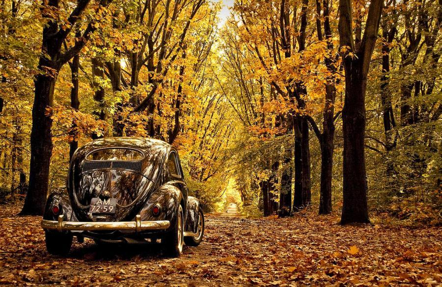 Autumnmobile