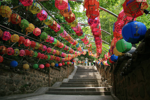 Lanterns at Beomeosa temple in Busan, South Korea (by cazfoto)