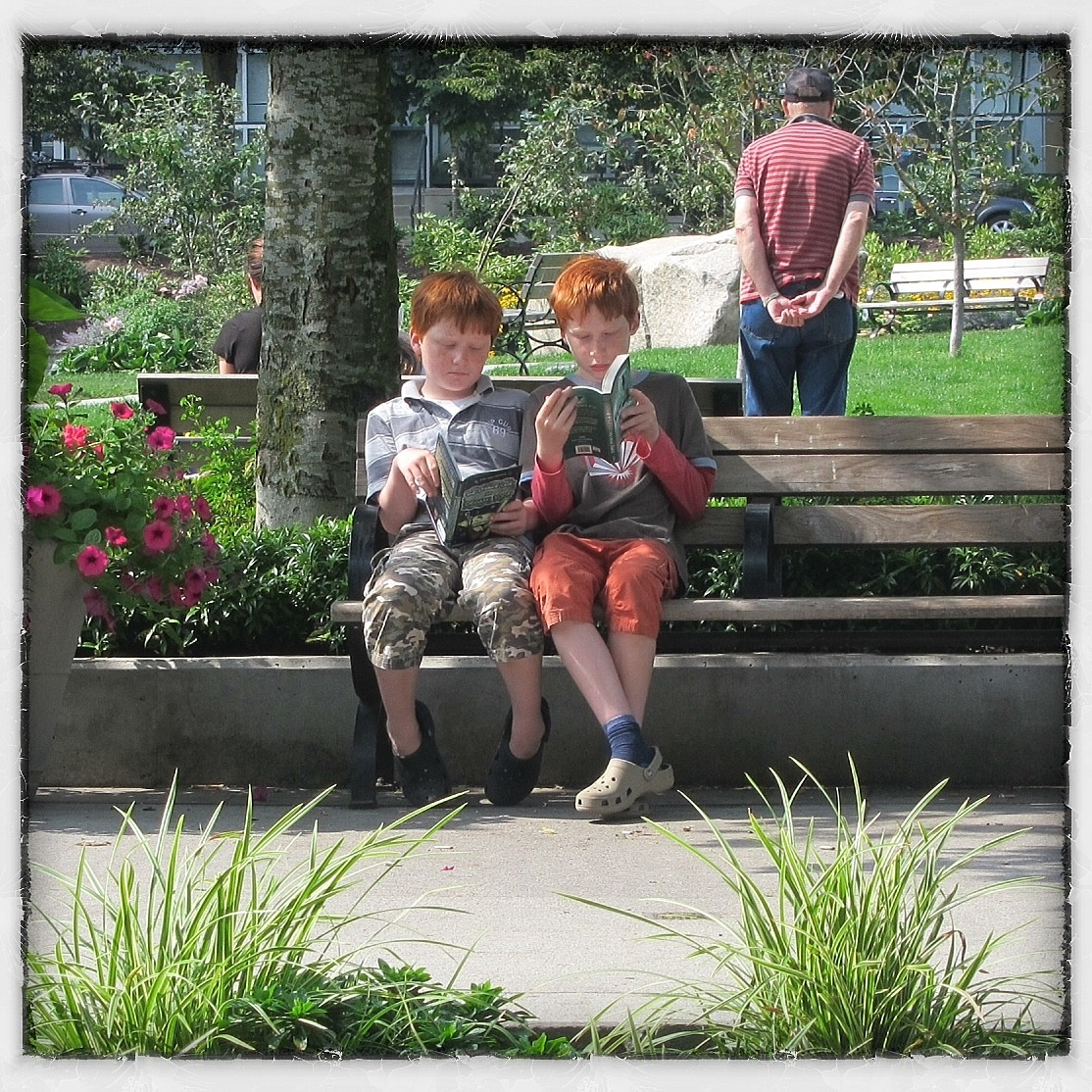 redheaded brothers reading in the park  Emery Barnes Park Vancouver BC