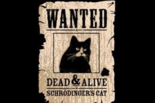 "This is and isn't a repost. [""The Schrodinger's Cat thought experiment was meant to refute the Copenhagen interpretation, wherein it was citing how ridiculous it was to say that the cat would be both alive and dead.""]"