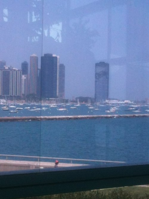 """Chicago Skyline from Shedd's Aquarium"" — Water, water everywhere! #waterwednesday Thanks to Cyndi H Try our app, get your photo shared!"