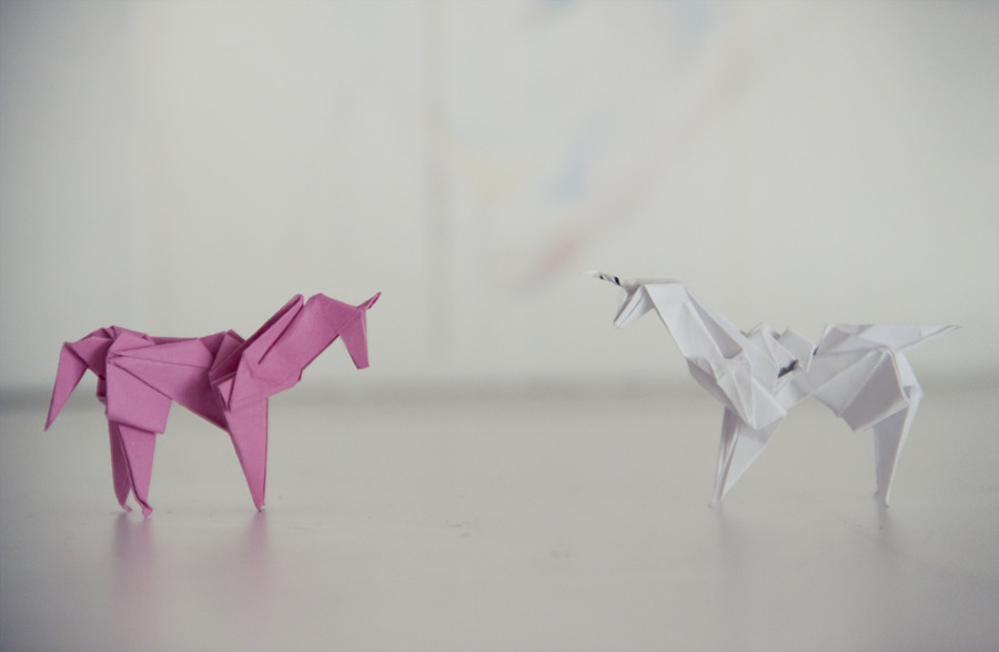 """agnes-cecile, what are your plans this summer?""""making unicorns"""
