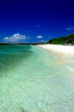 travelingcolors:  Okinawa Islands | Japan (by ( ´_ゝ`) Sho)