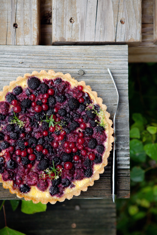 gastrogirl:  gluten-free berry and yogurt tart.