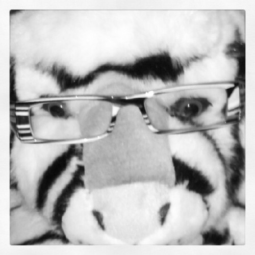 Day 8: tiger stripes! #glasses #photoadayaug #photoadayaugust  (Taken with Instagram)