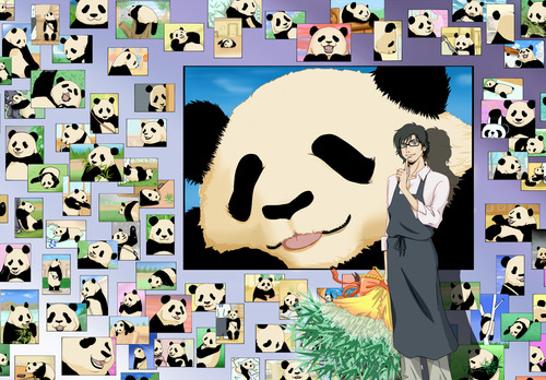 Fan art of Rin Rin's love for Panda.