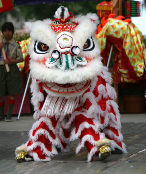 luffgaga:  I appreciate my culture and our Chinese new year.