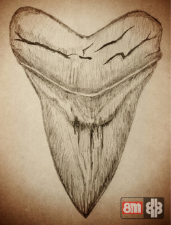 Grabbed one paper & pencil and scribbled dis shark's tooth.