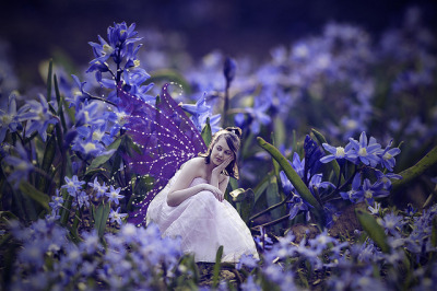 bluebelle faerie by arrowlili on Flickr.