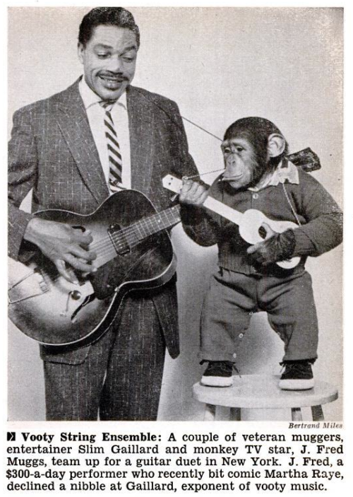 "oldshowbiz:  J. FRED MUGGS JAMS  I don't know what it is, but obviously ""Vooty"" music is totally overdue for a comeback… especially if we can get chimps in shoes to play it."
