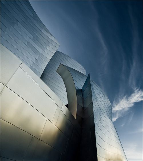 theweightisthegift:  Walt Disney concerthall, Los Angeles, USA