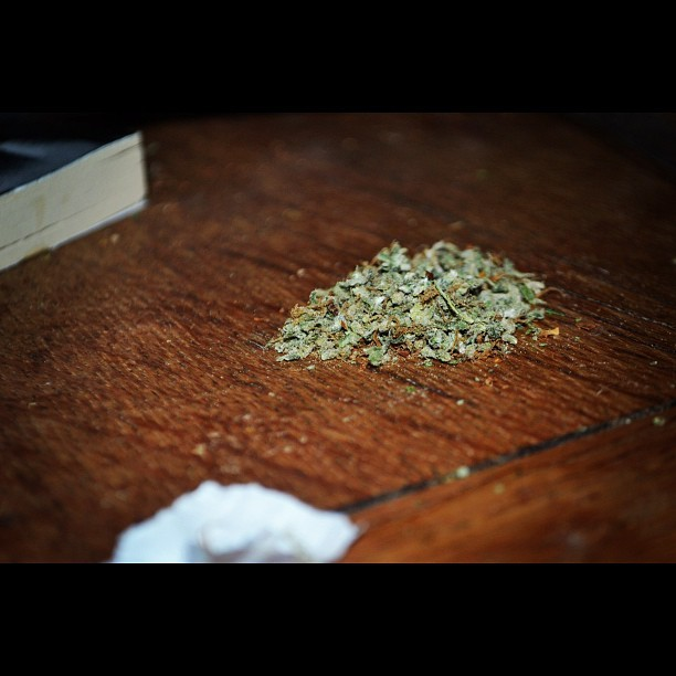 More kush. #photography #weed #high #stilllife #cannabis #faded #buzzed #cloud9 #life #highlife #green #cheese #amnesia #dutch (Taken with Instagram)
