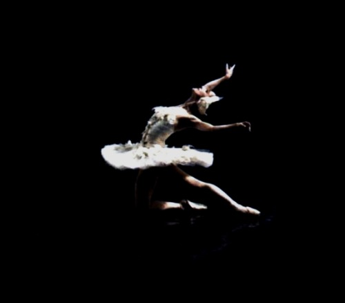 Prima ballerina Ana Botafogo in The Swan Lake