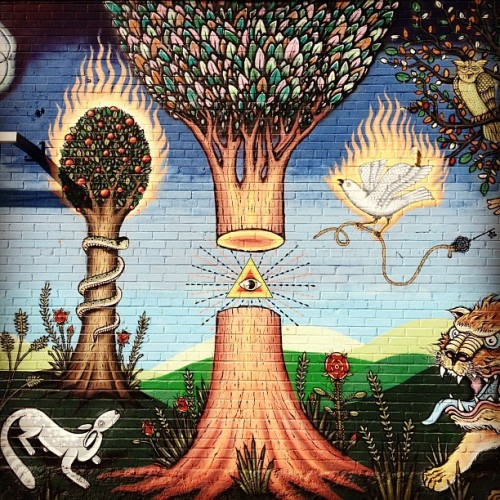 psychedelicmandala:  Illuminati vs Nature in Dallas, TX (Taken with Instagram)