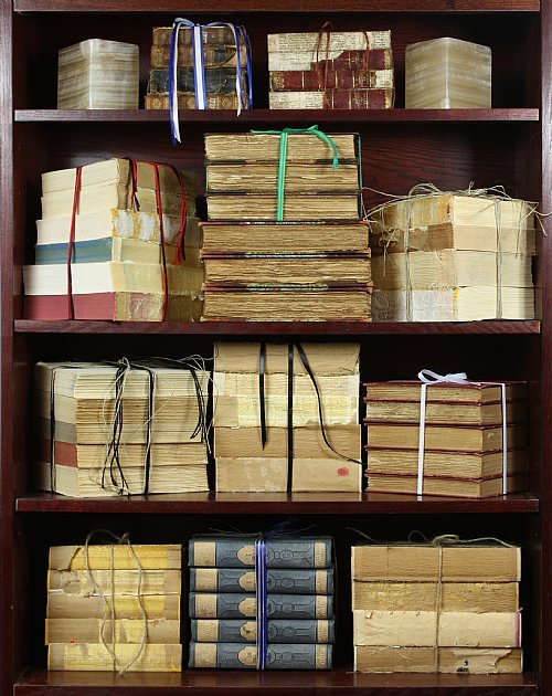 'Exotic Book Bundles.' {Interior decorating accents for people who would like to appear as if they read.}