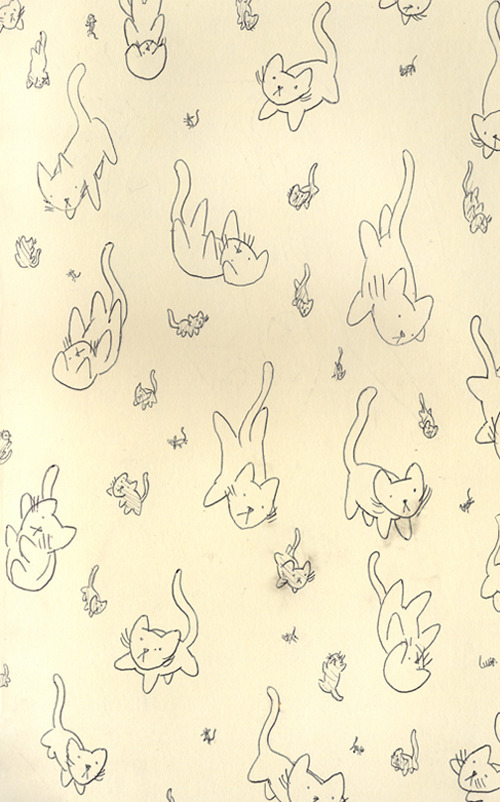 hoppip:  Kitten rain from my sketchbook ^-^