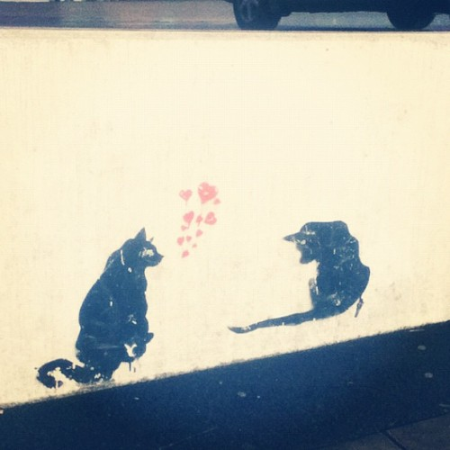 I #love this! #streetart #cats #cat #catsofinstagram (Taken with Instagram)