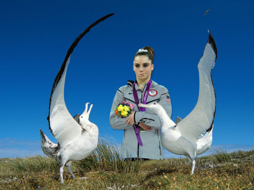 mckaylaisnotimpressed:  Albatross dance?  Hardly.