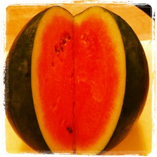 "My favorite watermelon recipe I have long been of the opinion that many, many fruits are best enjoyed without adornment. A perfect peach, seasonal strawberries, a ripe cantaloupe - eating them out of hand, savoring the juice, has always been the Platonic form of ""fruit"" for me. I still feel that way, but I have mellowed my stance a bit.  One recipe that nudged me along was this one, which I first tasted working for a wedding caterer a few summers ago. When the chef gave me the recipe to begin compiling the dish I was so surprised - melon and cheese? Fruit and olive oil? I guess I was far more culinarily naive then; the very idea of a savory fruit salad was pretty much mind-blowing to me at the time. Once I tasted it, something clicked. Something called, in technical terminology, my WowMyTasteBudsAreOfficiallyChangedForever switch. It got flipped. Hard.  Watermelon, Feta and Olive Salad - adapted from Saveur magazine  Ingredients: 3 cups loosely packed arugula (or mixed summer greens, as we received in this week's Sol Flower Farm CSA box) 1 cup loosely packed flat-leaf parsley leaves 1 cup loosely torn mint leaves 1 2-lb piece of watermelon, cut into 1"" cubes 20 kalamata olives, pitted and halved Up to 1 jalapeño pepper (or to taste), stemmed, seeded and julienned 1/4 small red onion, thinly sliced 4 oz (about 1/4 cup) feta cheese, crumbled (optional - remove if you don't eat dairy) 2 TBS extra virgin olive oil 2 limes, halved Coarse salt and fresh pepper Method: 1. In a large bowl, toss together the arugula, parsley, and mint. Divide greens between 4 serving bowls or plates. 2. In a medium bowl, toss together watermelon, olives, jalapeño, and onion. Spoon the watermelon mixture, with its juice, evenly over the greens. Sprinkle each salad with some of the feta and drizzle with olive oil. Squeeze 1 lime half over the top of each salad and sprinkle with salt and pepper. To serve this family style, simply combine the greens in a big bowl, combine the juicy ingredients in another, and gently mix the two together."