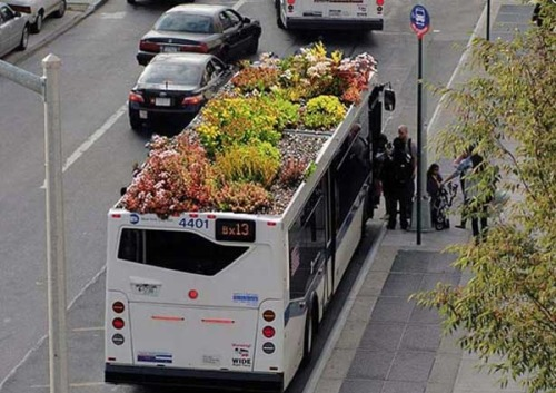 Bus Roots is a living garden planted on the roofs of city buses (NY). It's an effort that rose out of New York City designer Marco Antonio Castro Cosio's graduate thesis at the NYU
