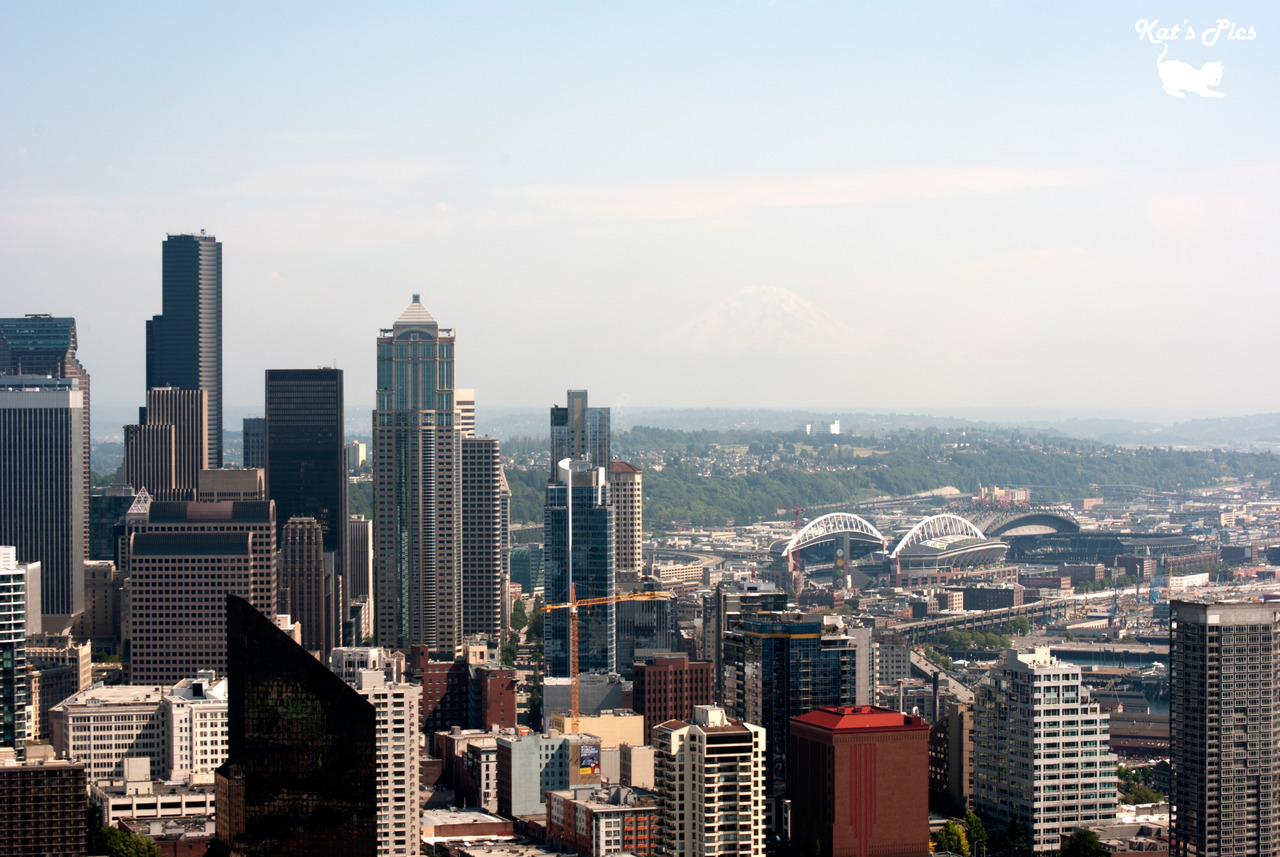 Seattle Skyline on Flickr. Via Flickr:Katheryn's Gallery *|* Tumblr *|* Facebook *|* 500px *|* TwitterView on black please! The Seattle Skyline from atop the Space Needle.  As I may have mentioned earlier, we recently moved into a bigger space closer to downtown Phoenix. I'm hoping to convert our spare bedroom into a portrait studio. Does anyone have any suggestions?